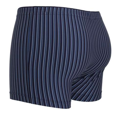 Bild von GÖTZBURG Herren Pants blau längsgestreift 1er Pack 120° Ansicht