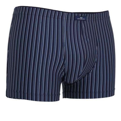 Bild von GÖTZBURG Herren Pants blau längsgestreift 1er Pack 330° Ansicht