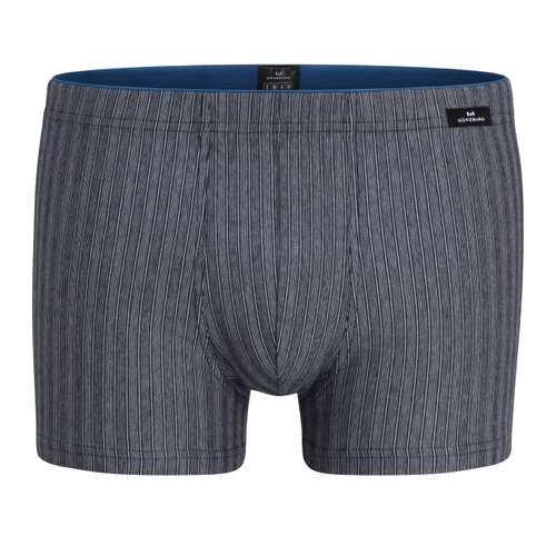 GÖTZBURG Herren Pants grau längsgestreift 1er Pack im 0° Winkel